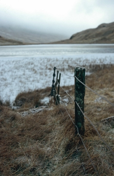 A decaying fence post on a winter's day in the Trossachs, Scottish Highlands.