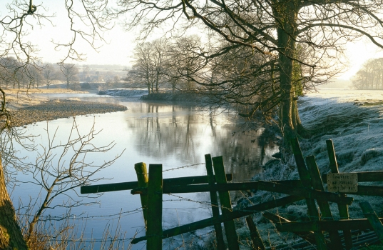 A frosty winter morning on the Wharfe near Otley