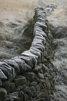 Frost patterns on a dry stone wall in Calderdale in the pennines