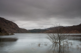 Llyn Dinas in flood after a wet night