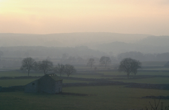 Winter afternoon mist near Grassington