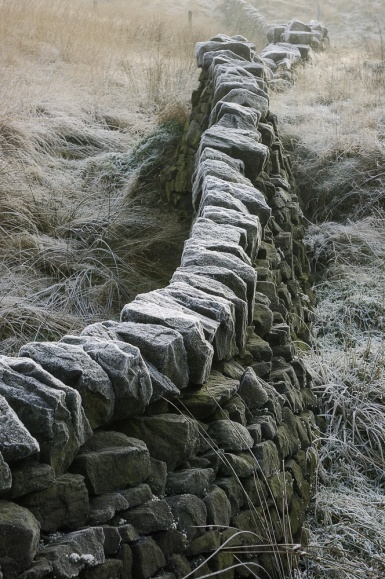 A hard frost in Calderdale adds texture to this tumbledown drystone wall