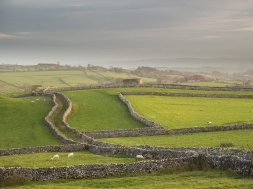 Drystone walls, fields and barns near Malham in the Yorkshire Dales