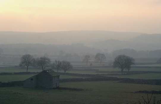 Winter afternoon mist near Grassington