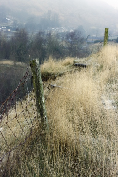 Rich colours and textures are typical of this South Pennine scene in Calderdale