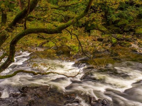 The Afon Glaslyn rushes over rocks near Beddgelert