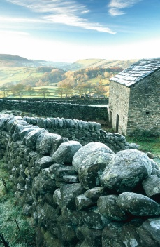 Frost on a drystone wall in Wharfedale