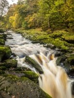 The famous Strid at Bolton Abbey, where the river rushes through a rocky cleft.