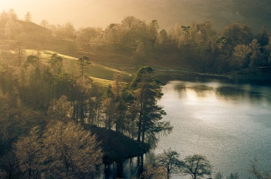 The setting sun catches the trees on the edge of Tarn Hows, Lake District